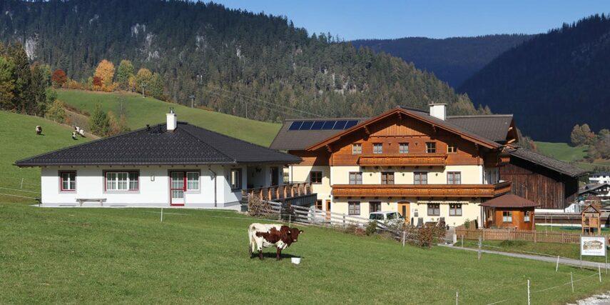 Kontakt & Anreise zum Ellmaubauer in Forstau