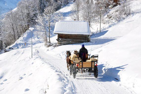 Pferdeschlittenfahrten - Winterurlaub in Forstau im Salzburger Land