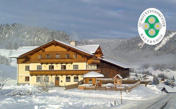 Urlaub am Bauernhof im Salzburger Land, Ellmauhof in Forstau