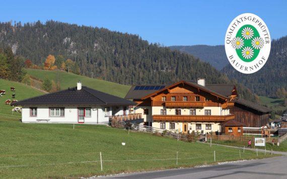 Urlaub am Bauernhof im Salzburger Land, Ellmaubauer in Forstau